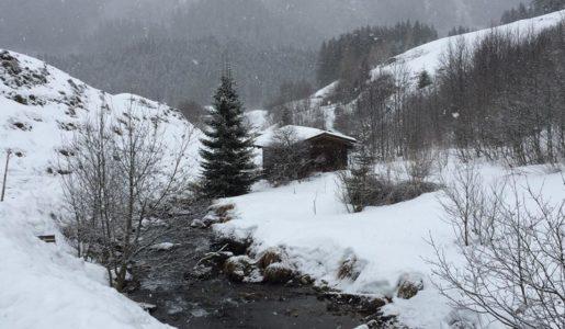 Zillertal 2017_2