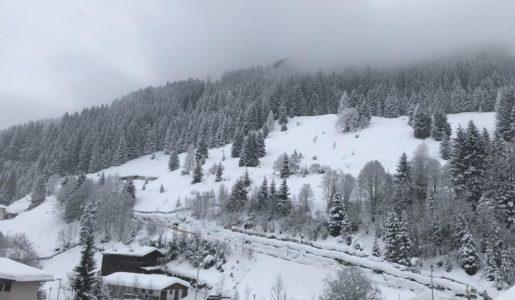 Zillertal2019_41